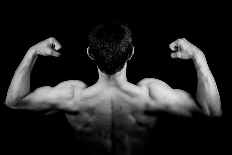 build muscle fit men get strong